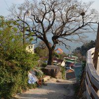 Daraengi village road