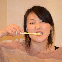 Muju Jaeun toothbrush 2