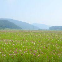 Sanbangsan field